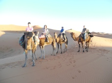 Last Thanksgiving we were on the Sahara, this year I will be earning miles to pay for our next trip